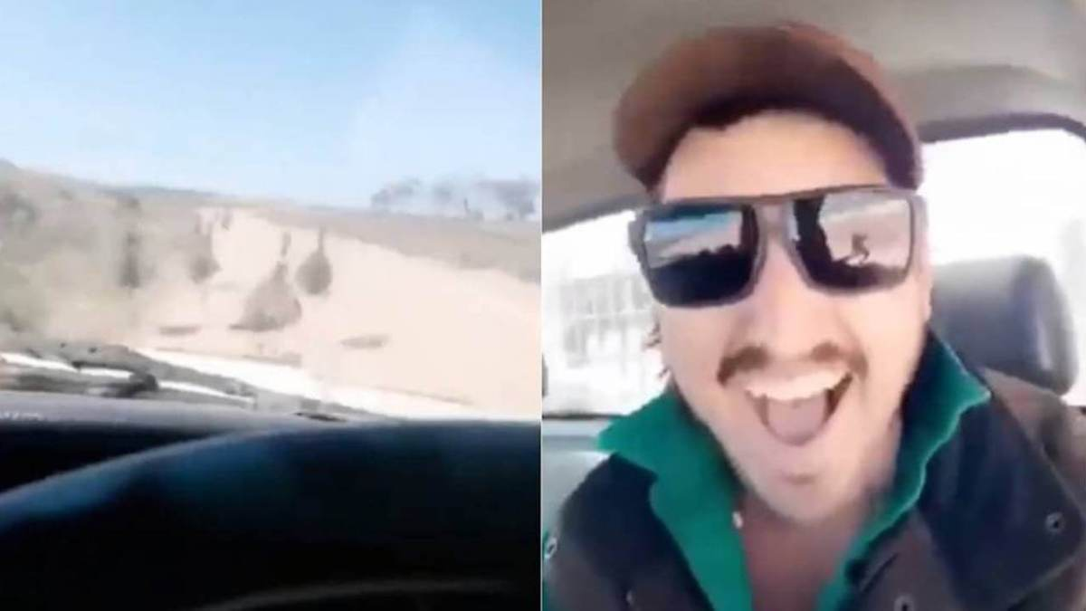 Hunt on for Australian driver seen mowing down emus