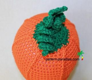 back pumpkin pickin' IMG_1747