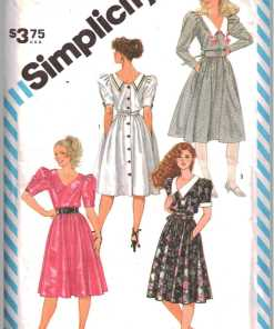 Simplicity 6242 F