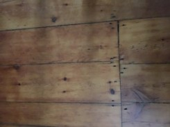 Original plank floors