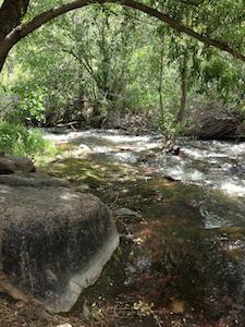 Bear Creek in Colorado