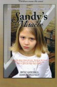 Sandy's Miracle Book