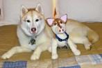 KhloeAnn&CrochetKhloe#2