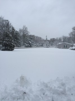 View of the area from my front yard.