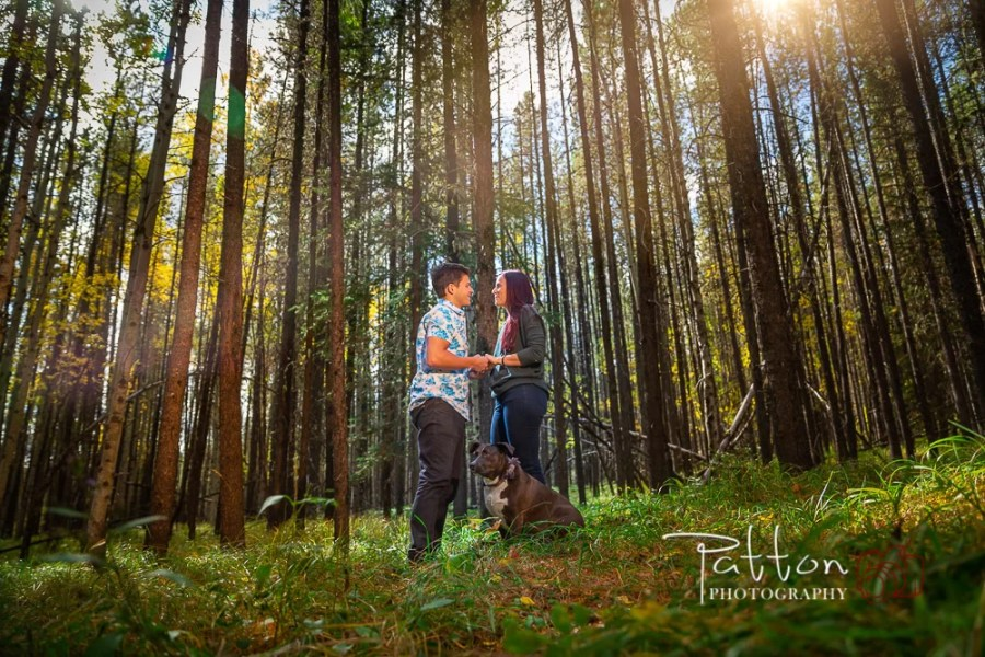 Engagement session with couple in the trees