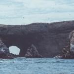 Paracas – rejs na wyspy Ballestas