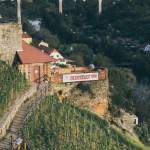 Czechy. Winnice na Morawach
