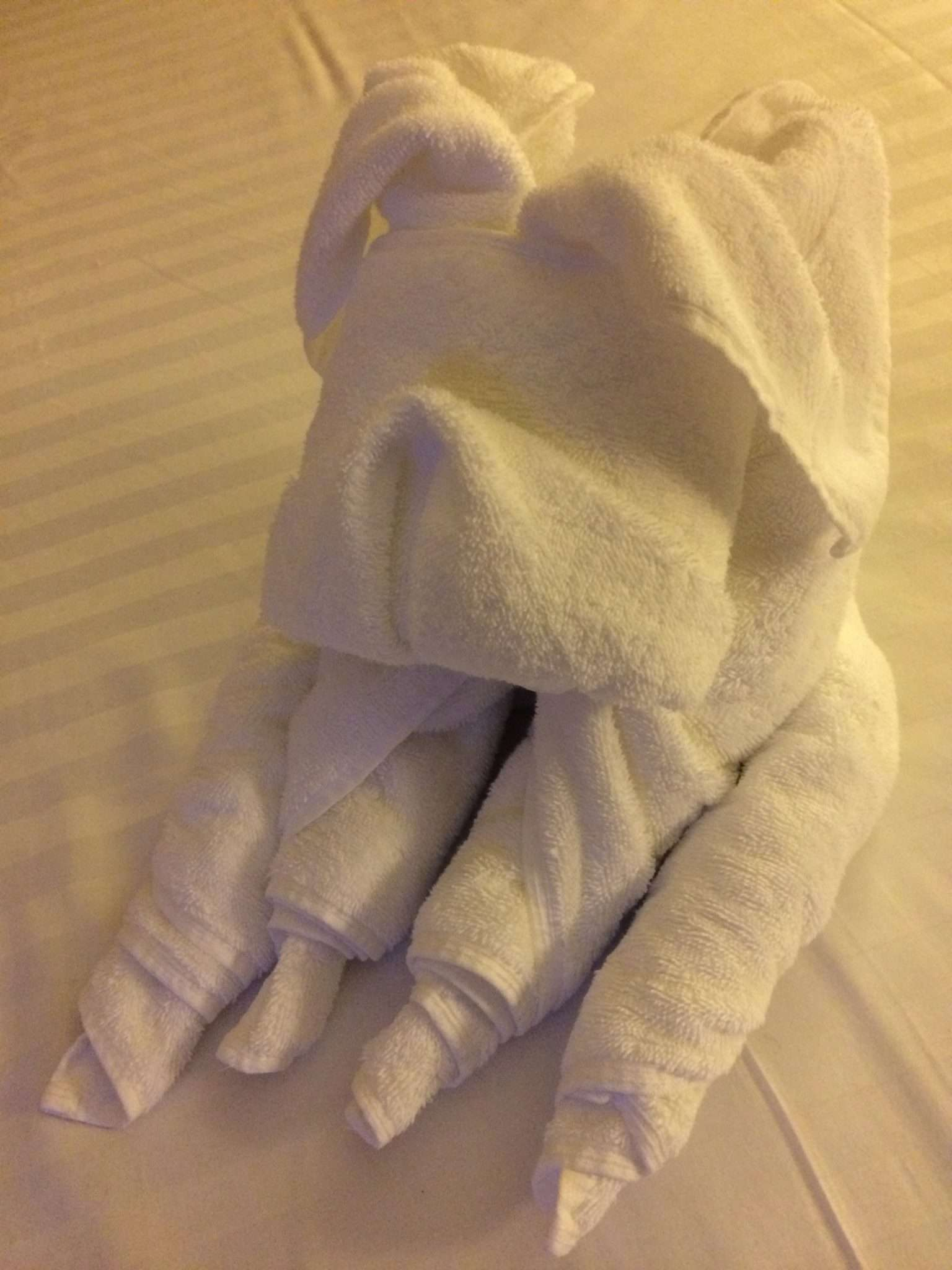 Fun with towel animals