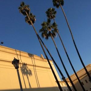 Vogue Knitting Pasadena 2016