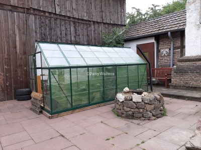Greenhouse on courtyard