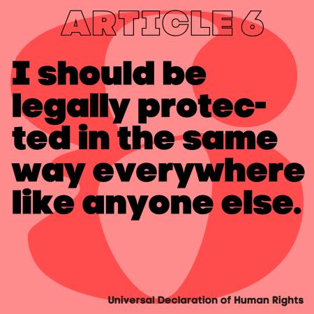 loog article 6 Universal Human Rights
