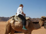 meeting-my-camel-in-wadi-rum