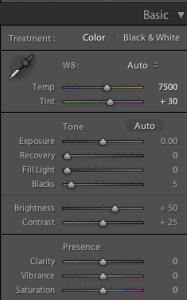 Adobe Lightroom 3 basic panel