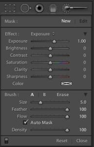 Adobe Lightroom 4 2010 Adjustment Brush Panel