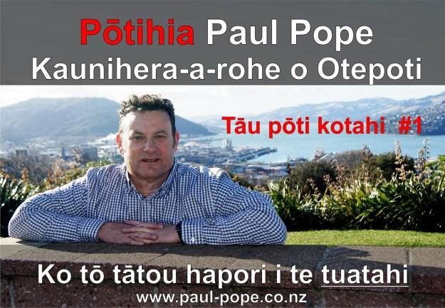Copy of Te Reo Poster