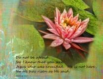 4April_Floral Calendar_standard_watermark