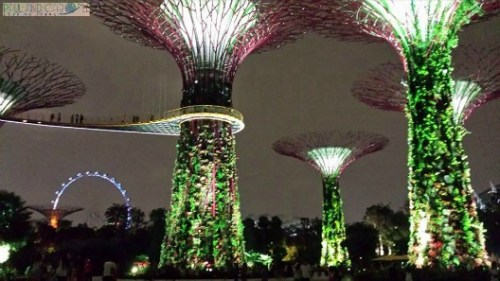 Eye behind the Gardens of the Bay paul and carole top travel tips singapore