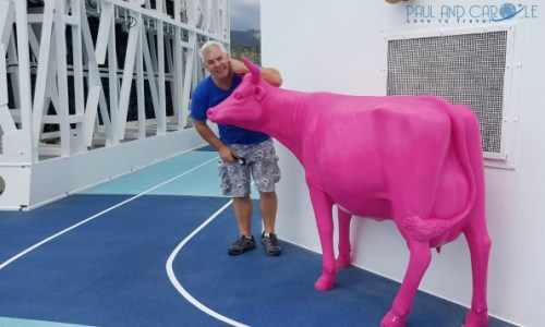 Pink cow deck 12 Marella Explorer 2 Cruise Ship Review    #cruise #ChooseCruise #cruising #marella #MarellaExplorer2 #TUI #explorer #review