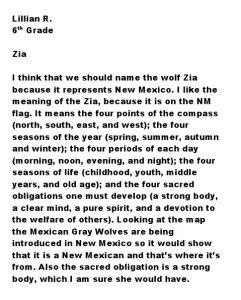 Essay by Lillian R.-6th Grade