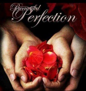 Book cover for Beautiful Perfection, a contemporary adult romance novel by D. M. Brittle
