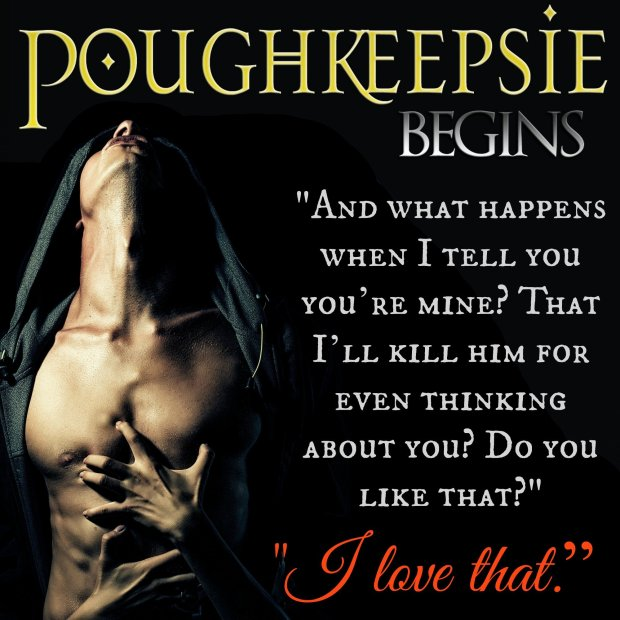 Photo Teaser from Poughkeepsie Begins, by Debra Anastasia