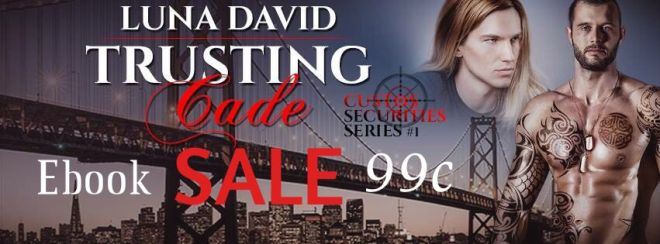 Banner Ad for Sale on Trusting Cade by Luna David