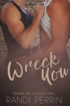 Book Cover for Wreck You, a M/M Romance by Randi Perrin