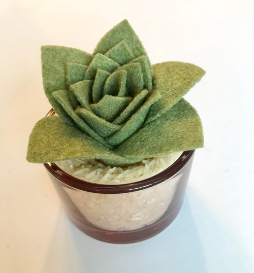 Felt succulent