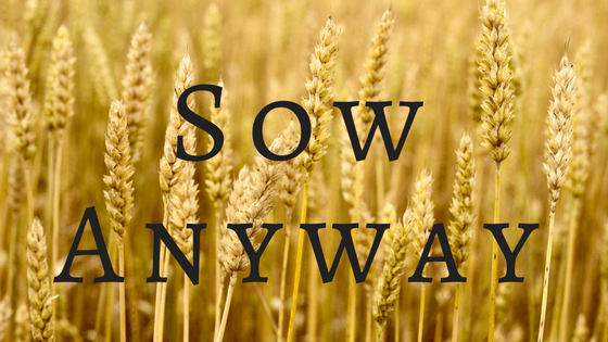 Sow Anyway title graphic
