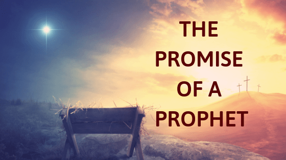 Promise of the prophet title graphic