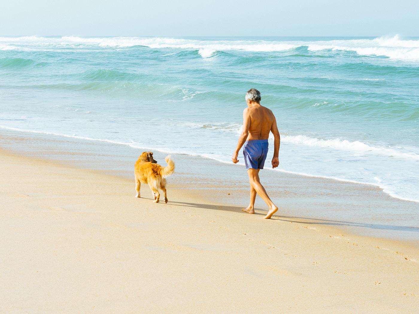 Urlaub Mit Hund Im Wohnmobil In 5 Schritten Perfekt