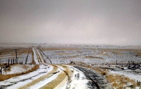 Approaching a scablands community with the stiff stubble escaping a light snow.