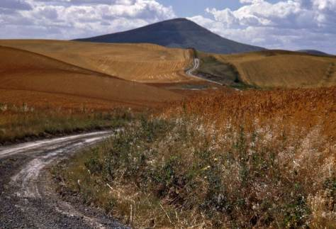 Road-to-Steptoe-Butte-WEB