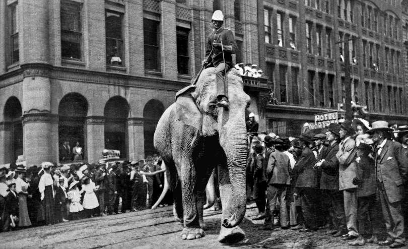 """THEN: Thanks to Seattle Public Library's """"Seattle Room"""" librarian Jeannette Voiland for encouraging me to treat this Pioneer Square parade as part of the 1912 Golden Potlatch Parade. I'm convinced."""