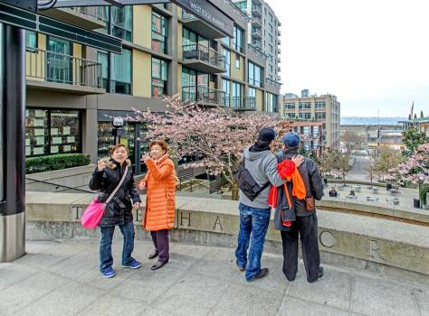 "NOW:  Jean notes, ""The Lin family, visiting Seattle on a near-Spring day, takes in two views from the Harbor steps - one looking over my shoulder at the Seattle Art Museum and the other of a cherry blossom-framed, if blustery, Elliott Bay."""