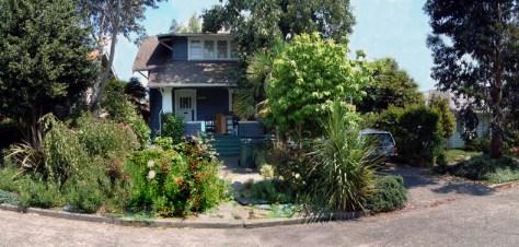 Recent verdure about the Dahl home