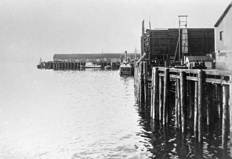 Looking north on the waterfront with the dark timbers of the Madison Street coal bunkers showing right-of-center, ca. 1898.