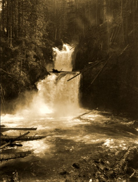 "The ""actual"" or namesake Cedar Falls were upstream from City Light's generator plant and downstream from its dam."