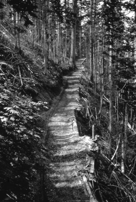 """The Snoqualmie pass """"highway"""" in 1914/15."""