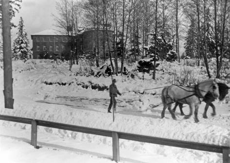 Horse logging down 15th Avenue Northeast with Science Hall (Parington Hall) on the U.W. campus.