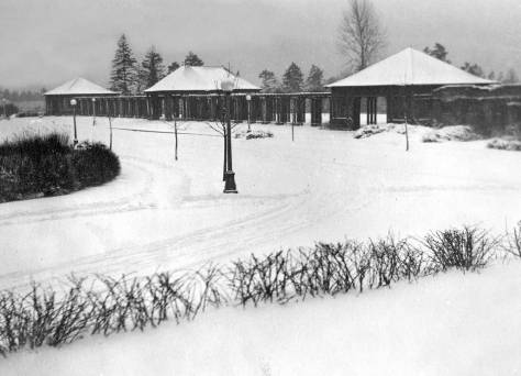 This photo of a snow-bound Volunteer Park pavilion may or may not be from the big one of 1916.