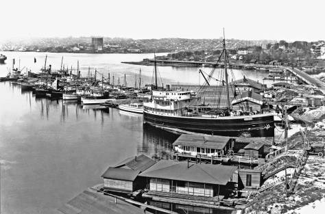The Lake Union Dry Dock photographed from the City Light steam plant, or construction on it. Fairview Avenue runs north over our featured by from the far right and continues around the point, top-center.