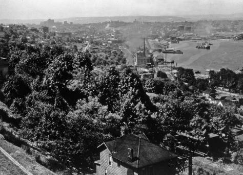 The south end of Lake Union from the Rhodes lawn. It dates from the early 20s, unless we are contradicted. The City Light steam plan on Eastlake (and Fairview) appears above the photo's center-right.