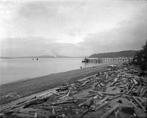Here a Webster and Stevens photographer looks northeast from the natatorium to the dock that delivered the first swimmers to the delights of heated salt water. The trolley first reached Alki Point in 1908.