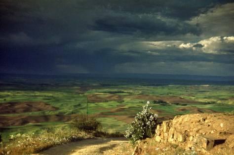 Horace visited Steptoe Butte several times.