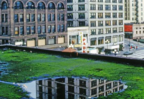 Frank Shaw's capture of the Smith Tower reflected in a pool on the moss-covered roof of the Butler Hotel.