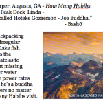 458. Linda Lee Harper, Augusta, GA - How Many Habibs
