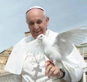 papa-francisco-paloma