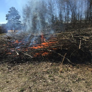Brush pile burning 2