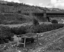 Llwyncely Colliery, Porth 1845-1851 51.609520, -3.396119